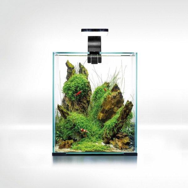 Aquael Shrimp Set 20L Czarny Day/Night 25x25x30cm