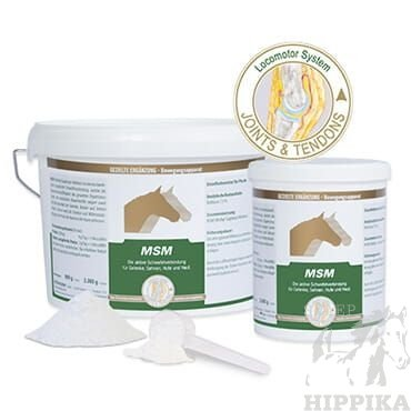 MSM - Stawy i chrząstki EQUIPUR 800 g proszek