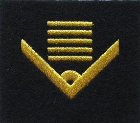 oznaka stopnia do kurtki lub swetra MW starszy chorąży sztabowy
