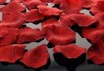 Płatki róż w woreczku bordowe 100 szt