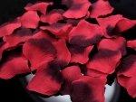 Płatki róż czerwone i bordowe 500szt PLRD500-007B