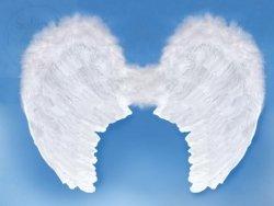 Skrzydła anioła 80 x 60cm