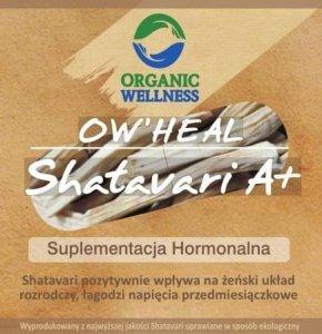 Shatavari, 60 kapsułek, Organic Wellness