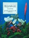 David Longman • Pielęgnowanie roślin pokojowych