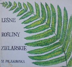 Maria Polakowska • Leśne rośliny zielarskie