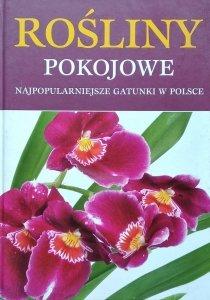 Piotr Czuchaj • Rośliny pokojowe. Najpopularniejsze gatunki w Polsce