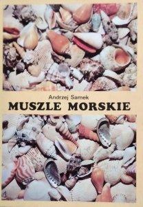 Andrzej Samek • Muszle morskie