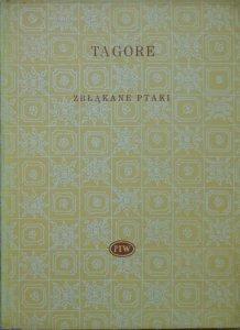 Rabindranath Tagore • Zbłąkane ptaki oraz inne poezje [Biblioteka Poetów]