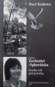 Elżbieta Zechenter-Spławińska • Grudka soli pod powieką