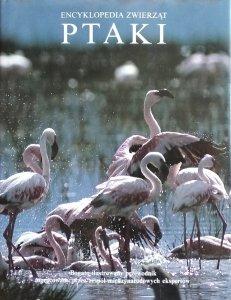 Encyklopedia zwierząt • Ptaki