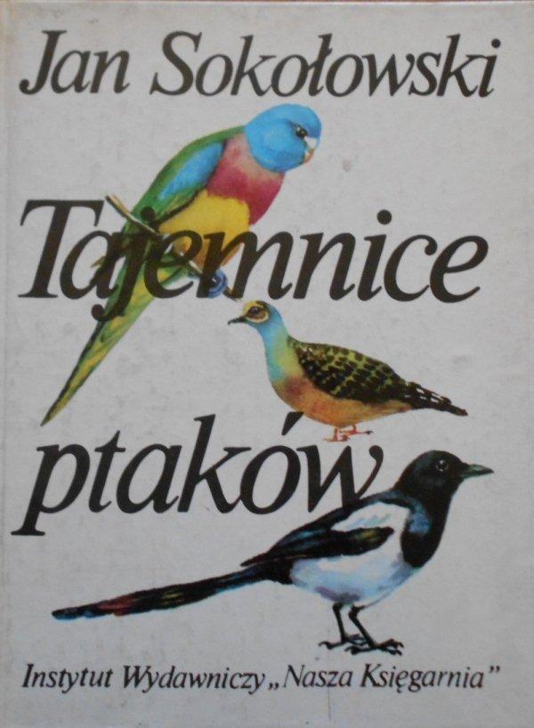 Znalezione obrazy dla zapytania: Jan Sokołowski Tajemnice ptaków