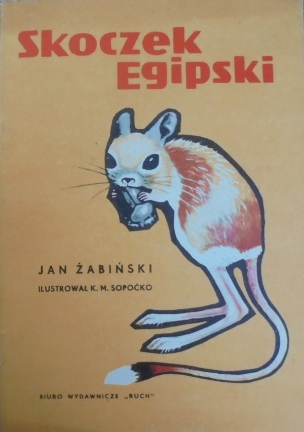 Jan Żabiński • Skoczek egipski [Konstanty Sopoćko]