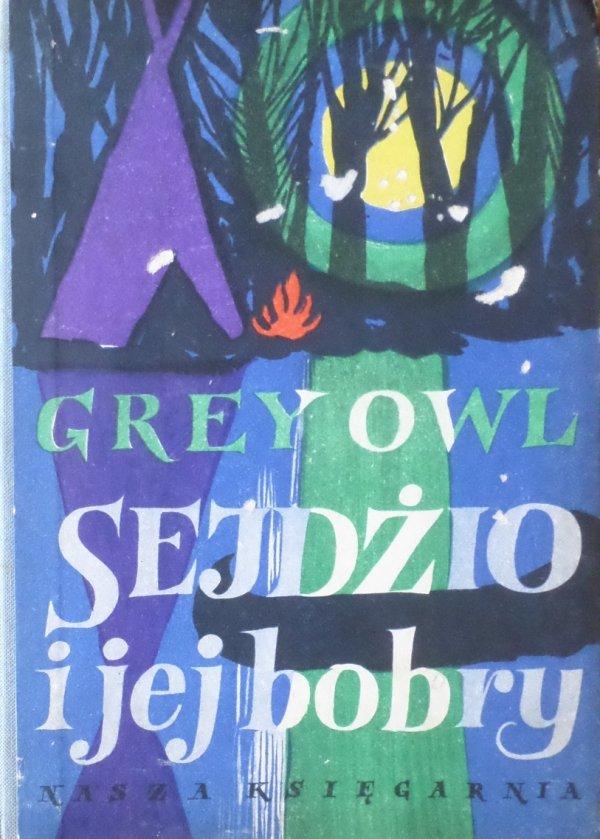 Grey Owl • Sejdżio i jej bobry [Zbigniew Rychlicki]