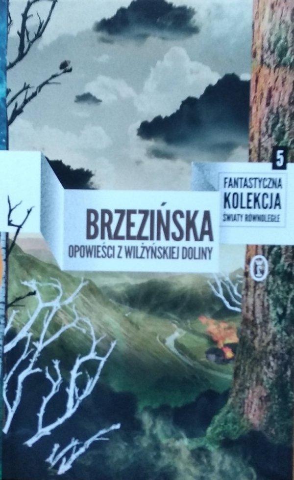 Anna Brzezińska • Opowieści z Wilżyńskiej Doliny