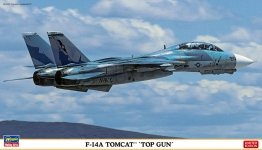 Hasegawa 02293 Grumman F-14A Tomcat Top Gun (1/72)