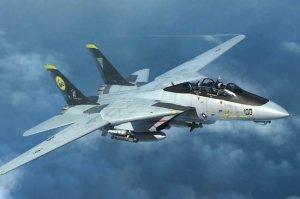 Trumpeter 03919 F-14D Tomcat 1/144