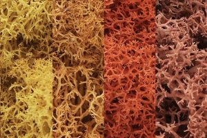 Woodland Scenics WL165 Lichen - Autumn Mix 1.4L