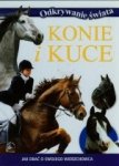 Konie i kuce Jak dbać o swojego wierzchowca