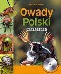 Owady Polski Chrząszcze