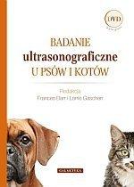 Badanie ultrasonograficzne u psów i kotów