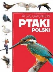 Atlas gatunków Ptaki Polski