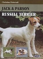 Jack & Parson Russell terrier