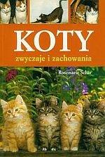 Koty zwyczaje i zachowania