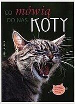 Co mówią do nas koty