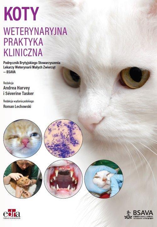 Koty Weterynaryjna praktyka kliniczna