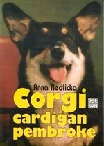 Corgi cardigan i pembroke oraz ich krótkonodzy kuzyni