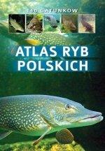 Atlas ryb polskich 140 gatunków