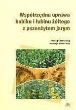 Współrzędna uprawa bobiku i łubinu żółtego z pszenżytem jarym