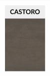 TI002 castoro