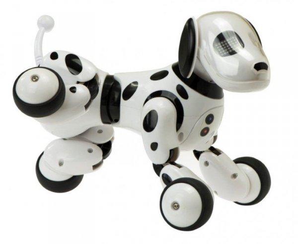Robopiesek Pies RC interaktywny Sterowany + pilot
