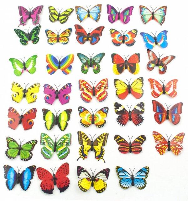 Motyle Motylki 3D magnesy
