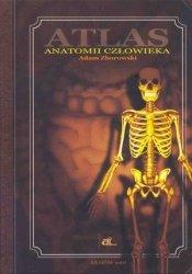 Atlas anatomii człowieka A. Zborowski