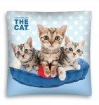 Poszewka na poduszkę 3D THE CAT 40 x 40 cm (CAT05MF)