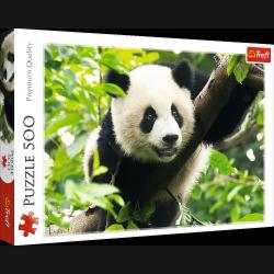 TREFL Puzzle 500 el. Panda (37142)