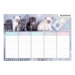 Plan lekcji CUTIES Kotki kotek z kotami (409085)
