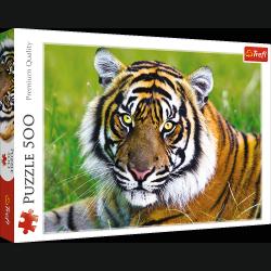 TREFL Puzzle 500 el. Tygrys (37192)
