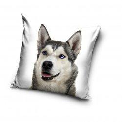 Poszewka na poduszkę HUSKY z psem 40 x 40 cm (PD191020)