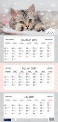 Kalendarz ścienny trójdzielny KOTEK z kotem 2020 (72829)