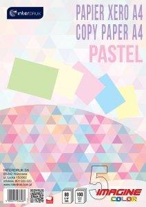 Papier ksero kolorowy A4 pastelowy 5 kolorów 100 arkuszy (36487)