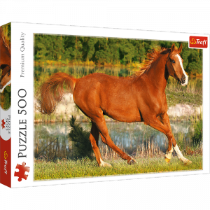 TREFL Puzzle 500 el. Piękno galopu (37184)