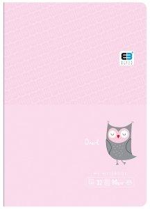 Zeszyt A5 w kolorową linię 16 kartek B&B OWL sowa (55563)