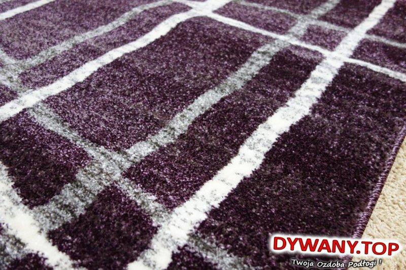 fioletowy dywan łuszczów