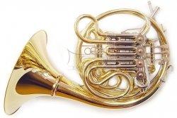 FINKE waltornia podwójna no. 66 Bb/F, złoty mosiądz, odkręcana czara