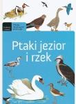 Ptaki jezior i rzek. Młody obserwator przyrody