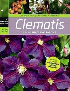 Clematisy i inne pnącza ogrodowe