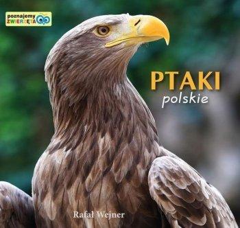 Ptaki polski. Poznajemy zwierzęta